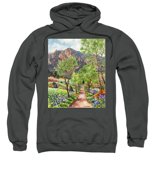 Forty Years Running Sweatshirt