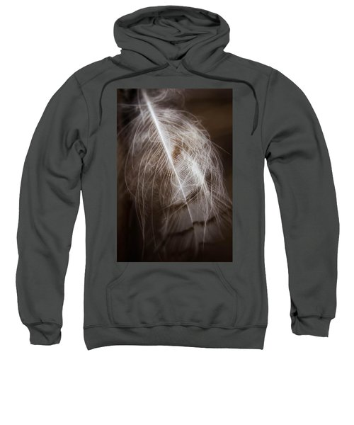 Found Feather Sweatshirt