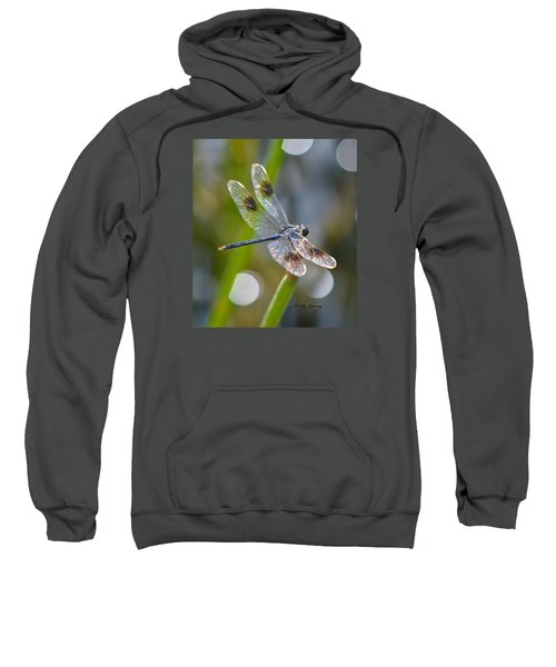 Four Spotted Pennant Sweatshirt