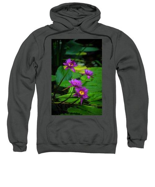 Four Waterlilies Sweatshirt