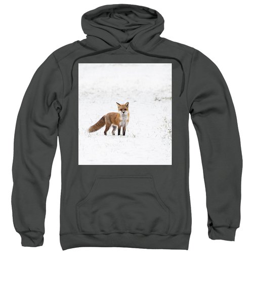 Fox 1 Sweatshirt
