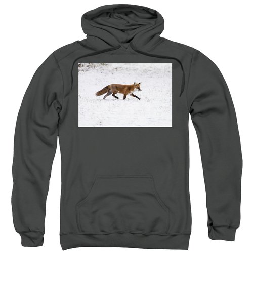 Fox 3 Sweatshirt