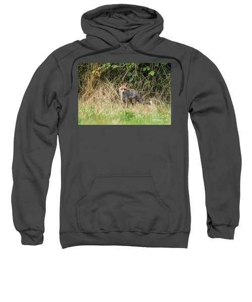 Fox In The Woods Sweatshirt