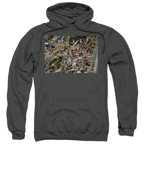 Framed Rugr Sweatshirt