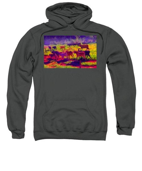 Franca Cattle 1 Sweatshirt