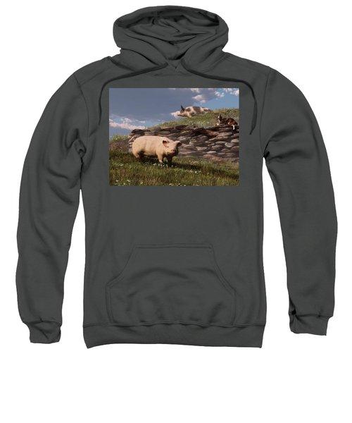 Free Range Pigs Sweatshirt
