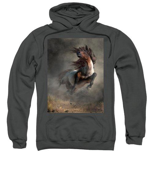 Frenzy Sweatshirt