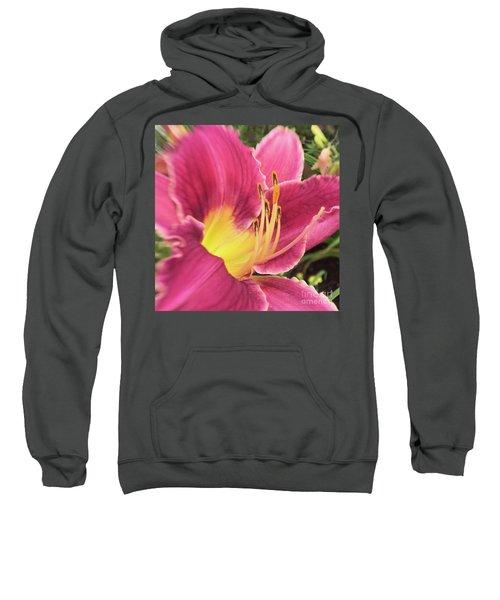 Friends Boldly Gather Sweatshirt