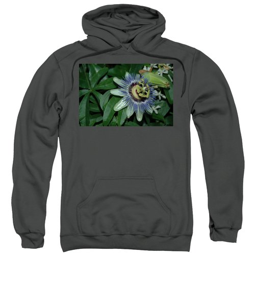 Fringed Color Sweatshirt