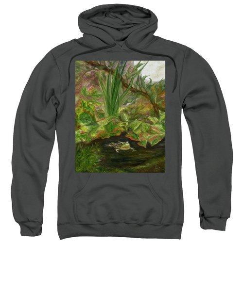 Frog Medicine Sweatshirt