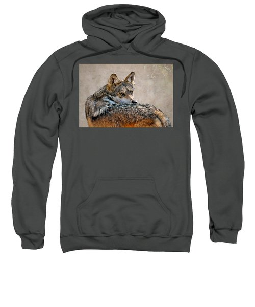 From Out Of The Mist Sweatshirt