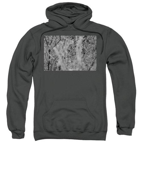 Frost 2 Sweatshirt
