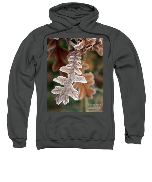 Frost Covered Oak Leaf Sweatshirt