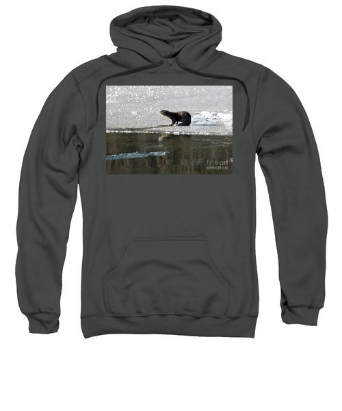 Frosty River Otter  Sweatshirt by Mike Dawson