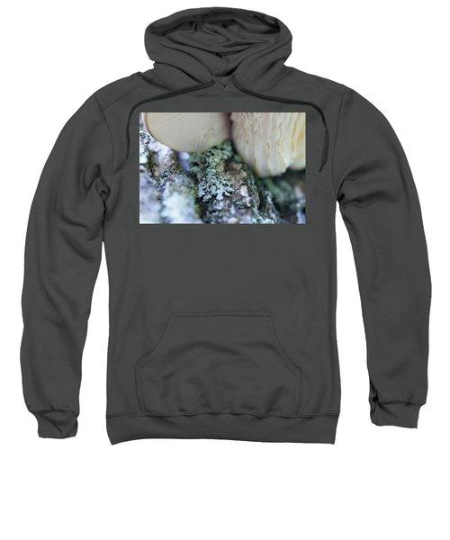 Fungi - 9391 Sweatshirt