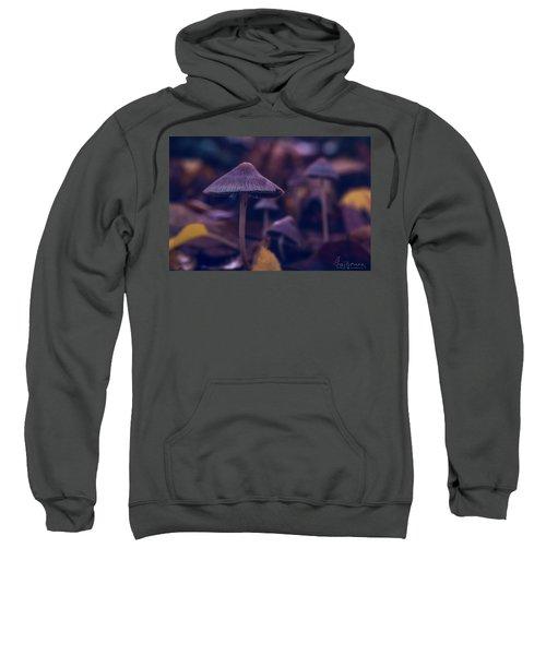 Fungi World Sweatshirt