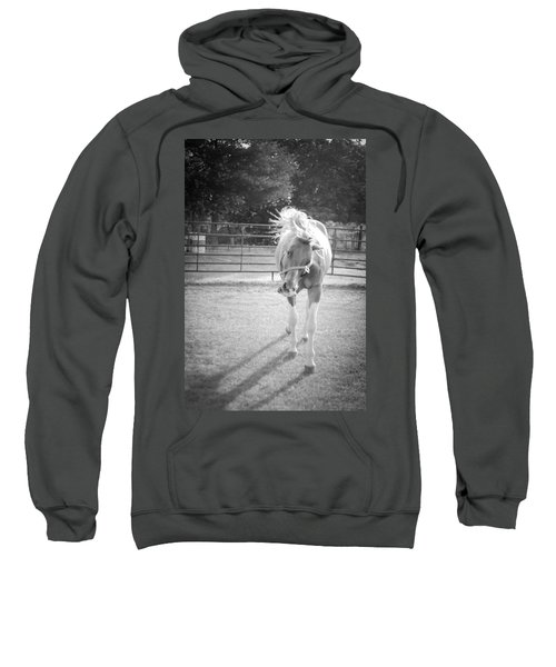 Funny Horse In Black And White Sweatshirt