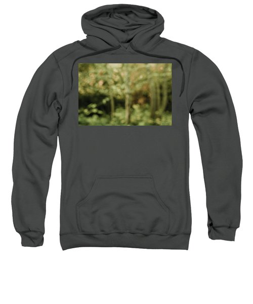 Fuzzy Vision Sweatshirt
