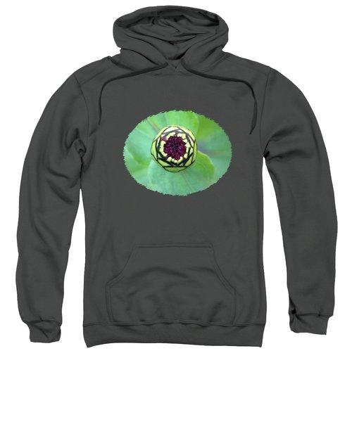 Garden Alien Landing Sweatshirt