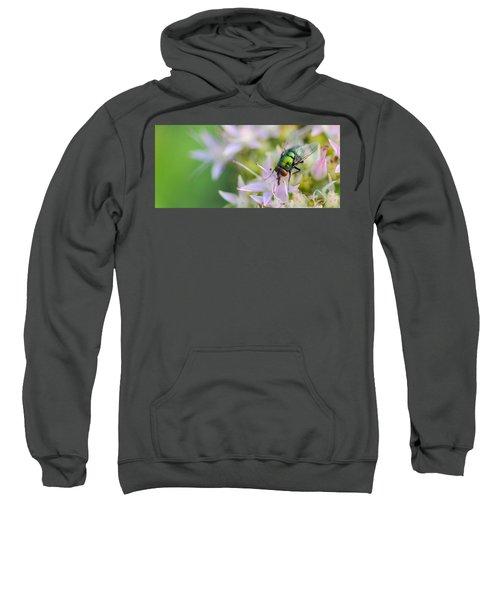 Garden Brunch Sweatshirt