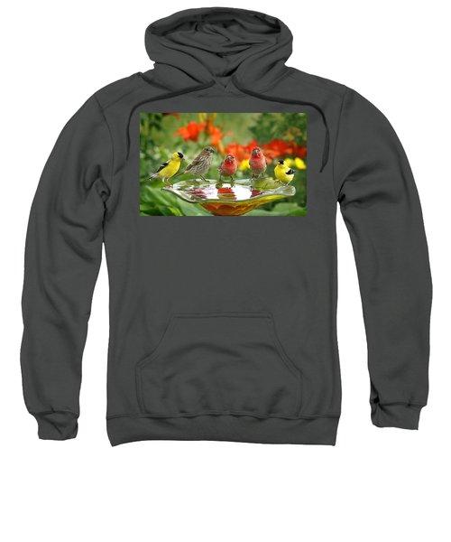 Garden Party Sweatshirt by Bill Pevlor