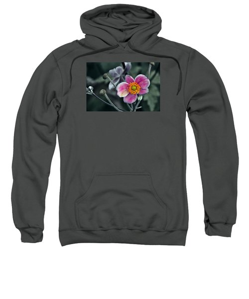 Garden Treasure Sweatshirt