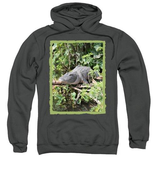 Gator In Green Sweatshirt by Carol Groenen