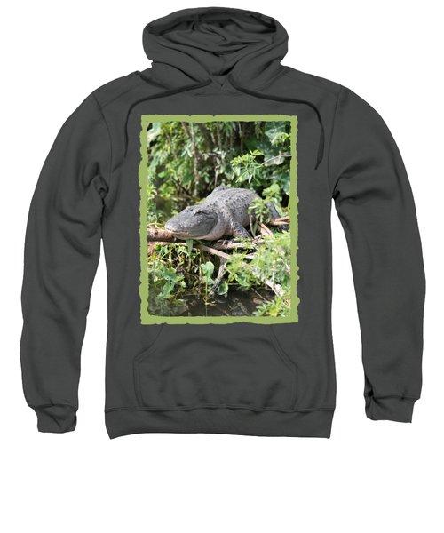 Gator In Green Sweatshirt