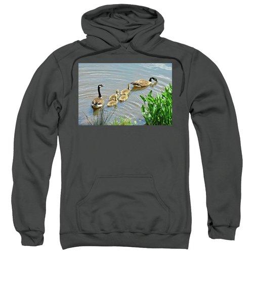 Geese And Goslings Sweatshirt