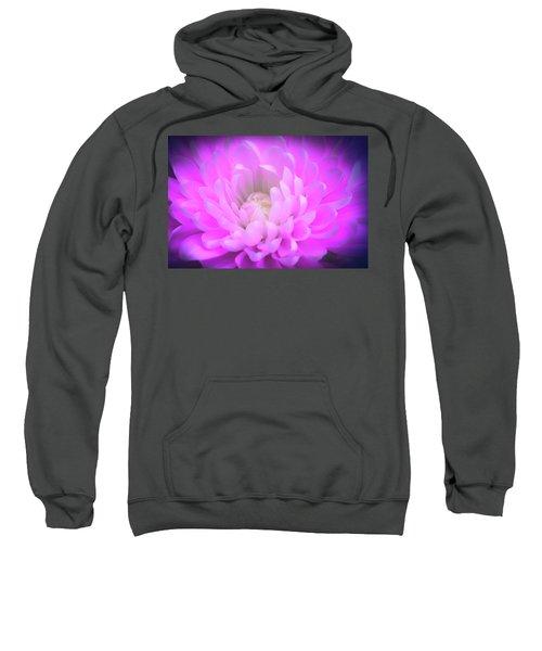 Gentle Heart Sweatshirt