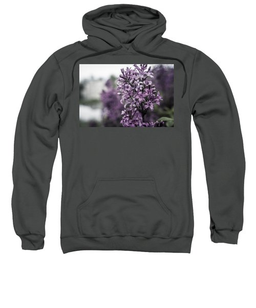 Gentle Spring Breeze Sweatshirt