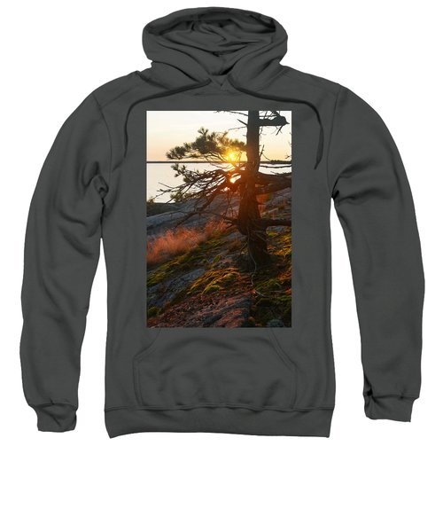 Georgian Bay Sunrise Wild Grass Sweatshirt