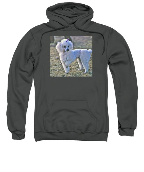 Georgie Sweatshirt