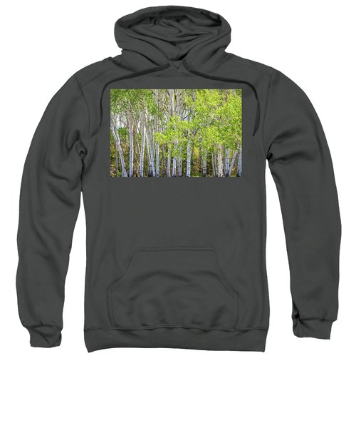 Getting Lost In The Wilderness Sweatshirt by James BO Insogna