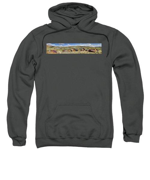 Ghostly Panorama Sweatshirt