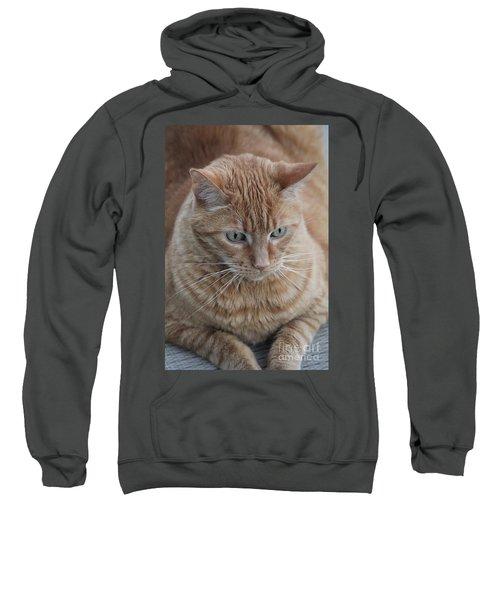 Ginger Cat Sweatshirt