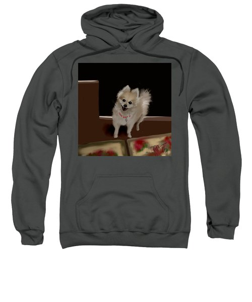 Ginger Ll Sweatshirt