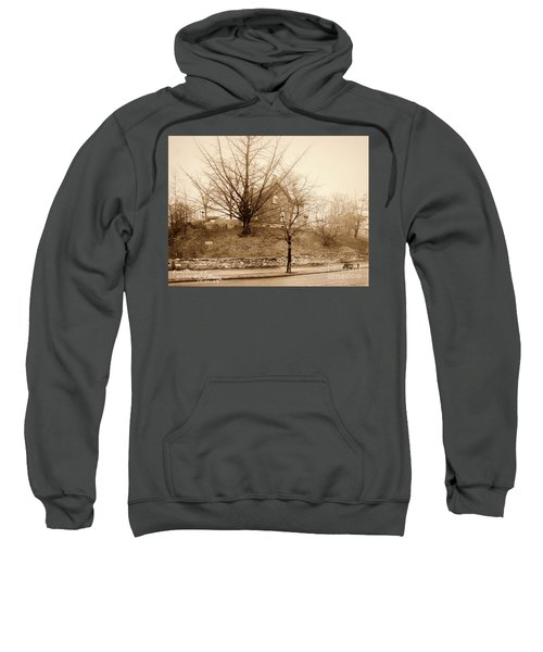 Ginkgo Tree, 1925 Sweatshirt