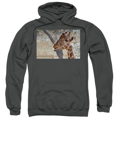 Girafe Head About To Grab Food Sweatshirt
