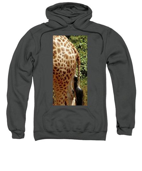 Giraffe Tails Sweatshirt by Exploramum Exploramum
