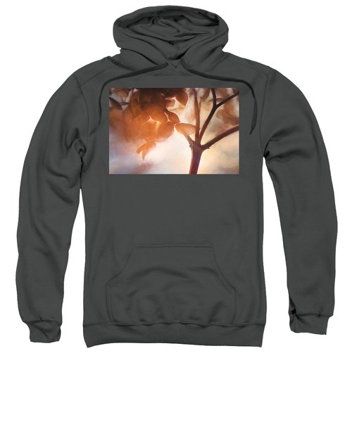 Give Thanks For The Light Sweatshirt