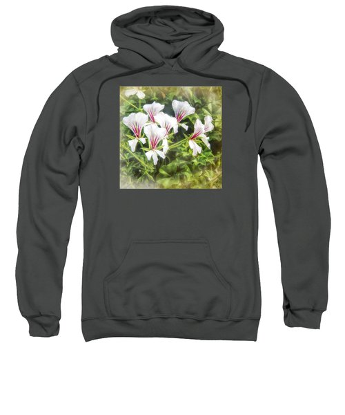 Gladiolus Callianthus Sweatshirt