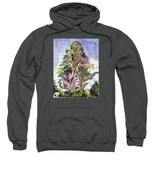 Glendalough Tree Sweatshirt