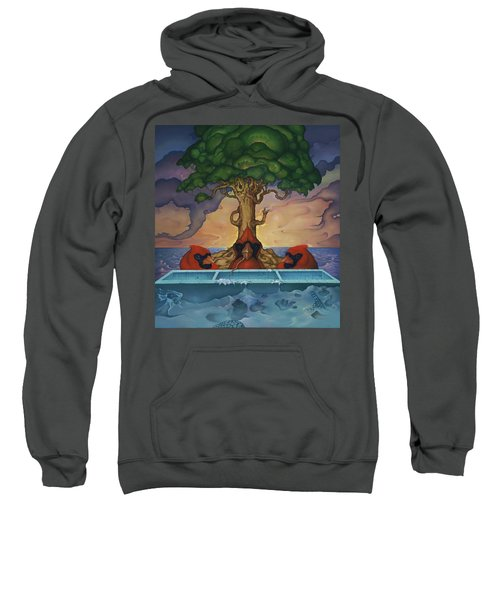 Global Warming And The Ridiculousness Of Discussing The Next Ice Age Sweatshirt
