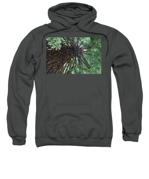 Glorious Tree  Sweatshirt