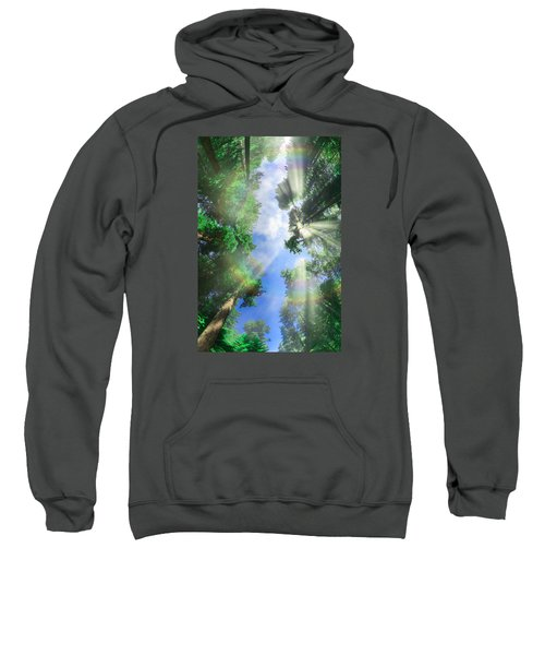Glory Amongst Redwoods Sweatshirt