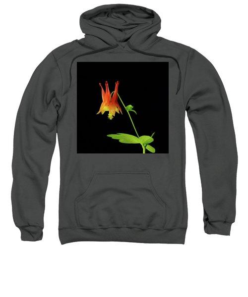 Glowing Colombine Sweatshirt