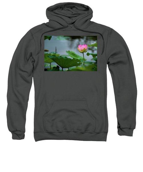 Glowing Lotus Lily Sweatshirt