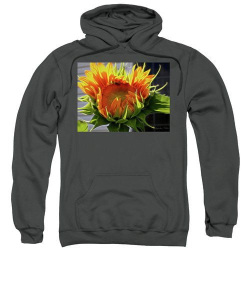 Glowing Sun Sweatshirt