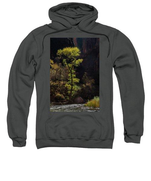 Glowing Tree At Zion Sweatshirt